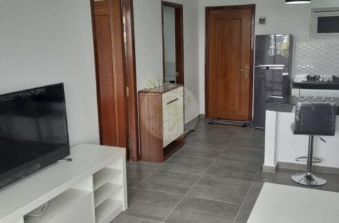 , Europe Style Apartment for Rent. 500 USD Per Month