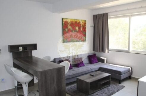 , Great Wonders Apartment for Rent